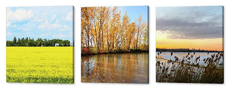 Canvas-Prints - ArtStudio29