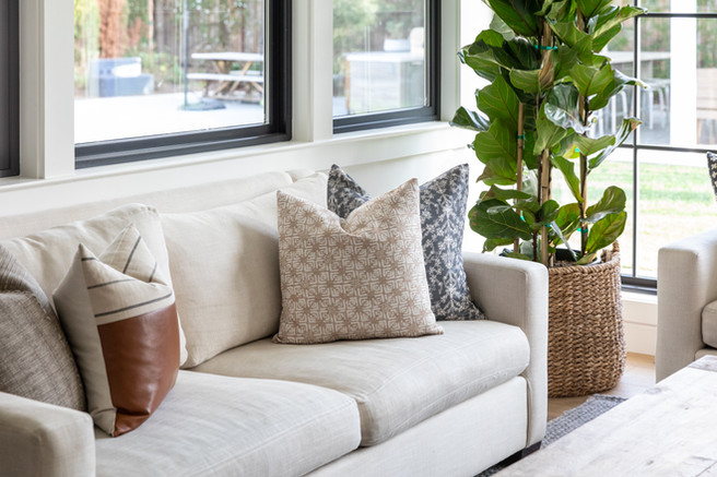Organic modern living room with linen sofa