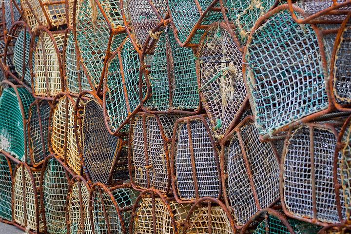 Puerto de Vega, Asturias, Spain. Closeup