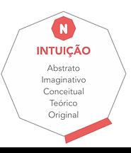 4_intuicao.png