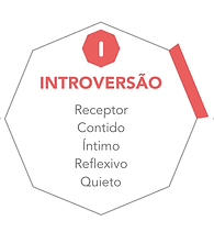2_extroversao.png
