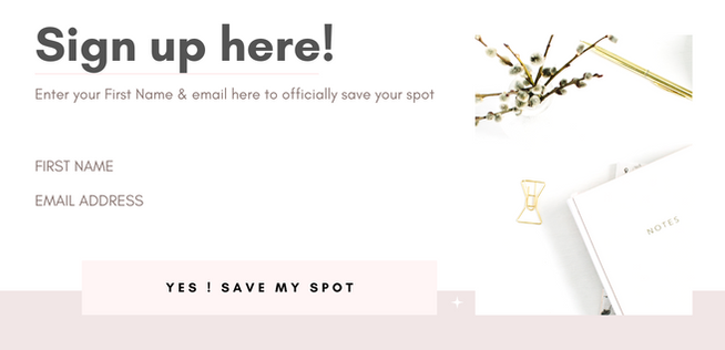 For Landing Page - 3 day challenge - Make sign up button functional (2).png