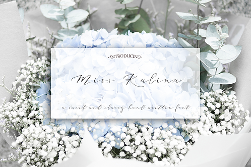 Miss. Kalina Font (Standard License)