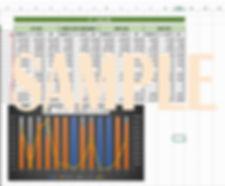 Excel画面.jpg