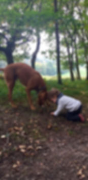child and dog outside