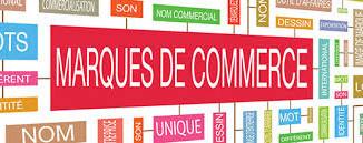 Droits et limites des collectivités territoriales sur leur nom enregistré comme marque ou nom de dom