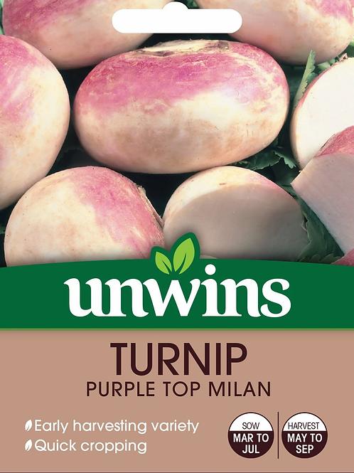 Unwins Turnip Purple Top Milan