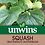 Thumbnail: Unwins (Butternut) Butterbush