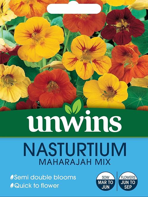 Unwins Nasturtium Maharajah Mix