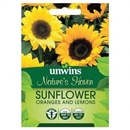 Unwins Sunflower Oranges & Lemons
