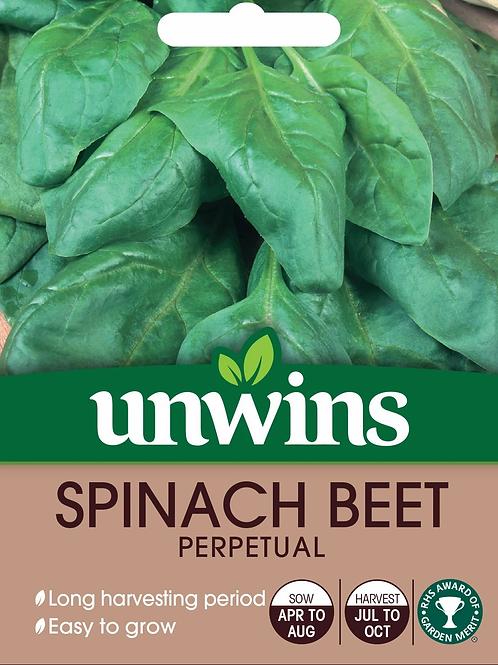 Unwins Spinach Beet Perpetual