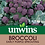Thumbnail: Unwins Broccoli (Sprouting) Early Purple