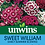 Thumbnail: Unwins Sweet William Early Summer Scented