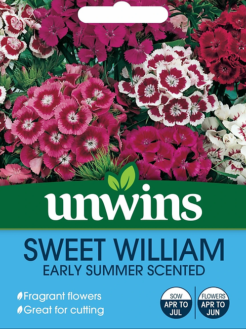 Unwins Sweet William Early Summer Scented