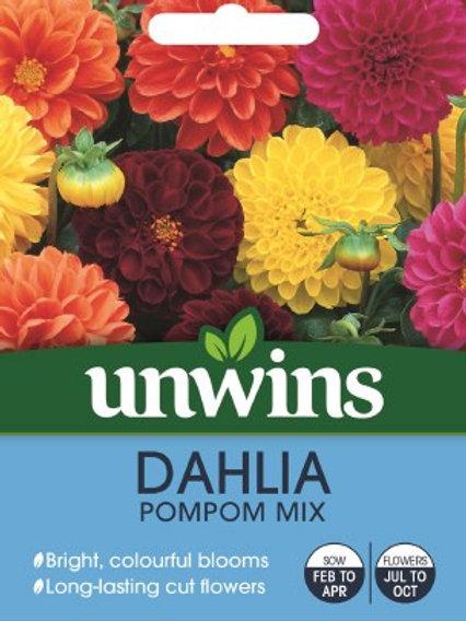 Unwins Dahlia PomPom Mix