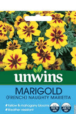 Unwins Marigold (French) Naughty Marietta