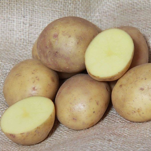 Organic Colleen First Early Seed Potato's 2kg