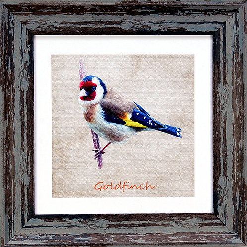 Gold Finch Square Frame Photo
