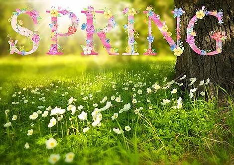 spring-1210194_1280.webp