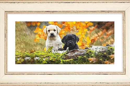 Puppy Rectangular Frame Photo