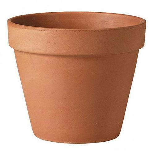 Standard Terra Pot