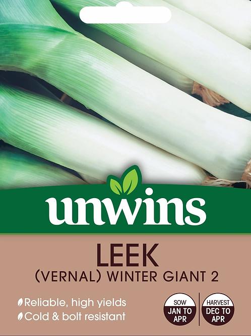 Unwins Leek Winter Giant 2