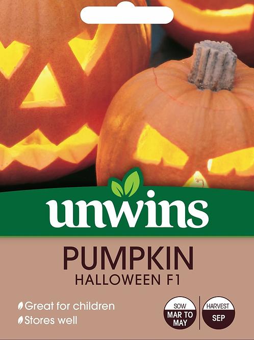 Unwins Pumpkin Halloween F1