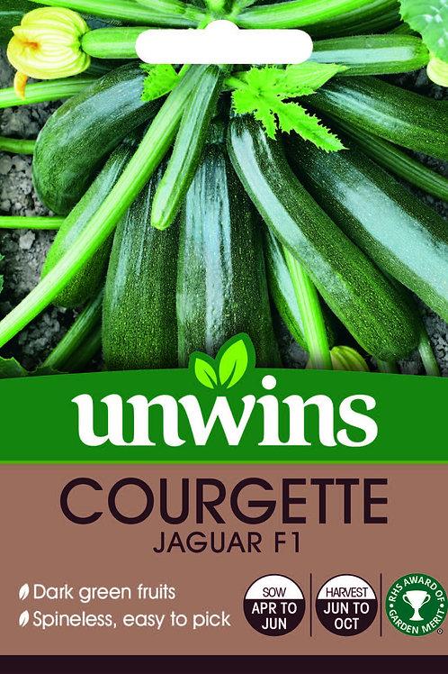 Unwins Courgette Jaguar F1