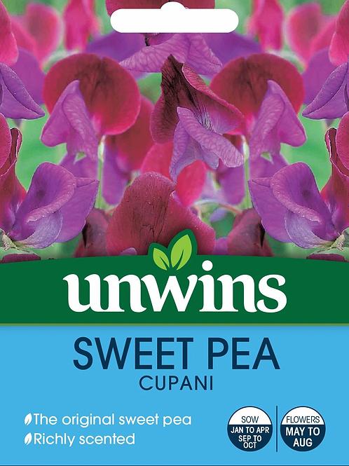 Unwins Sweet Pea Cupani