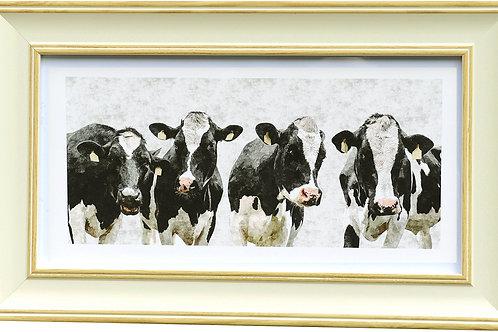 Cows Rectangular Frame Photo