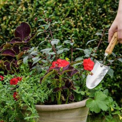 Kent & Stowe Garden Life Stainless Steel Hand Trowel