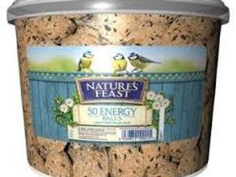 Natures Feast 50 Energy Suet Balls Tub