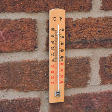 Beech Wooden Wall Thermometer