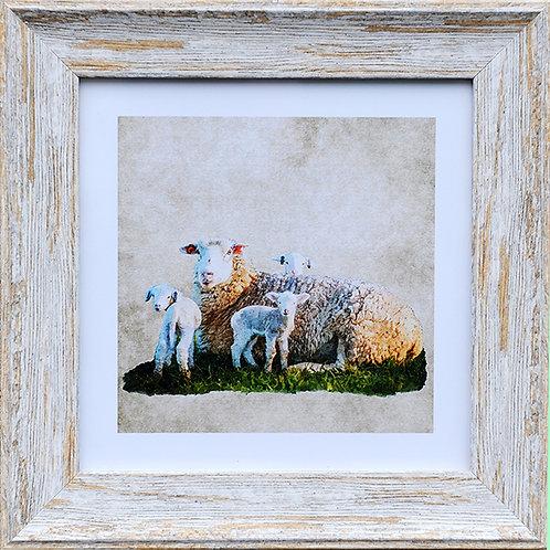 Sheep Square Photo Frame