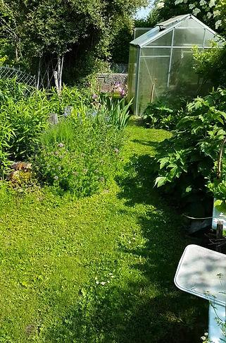 Mein Naturgarten
