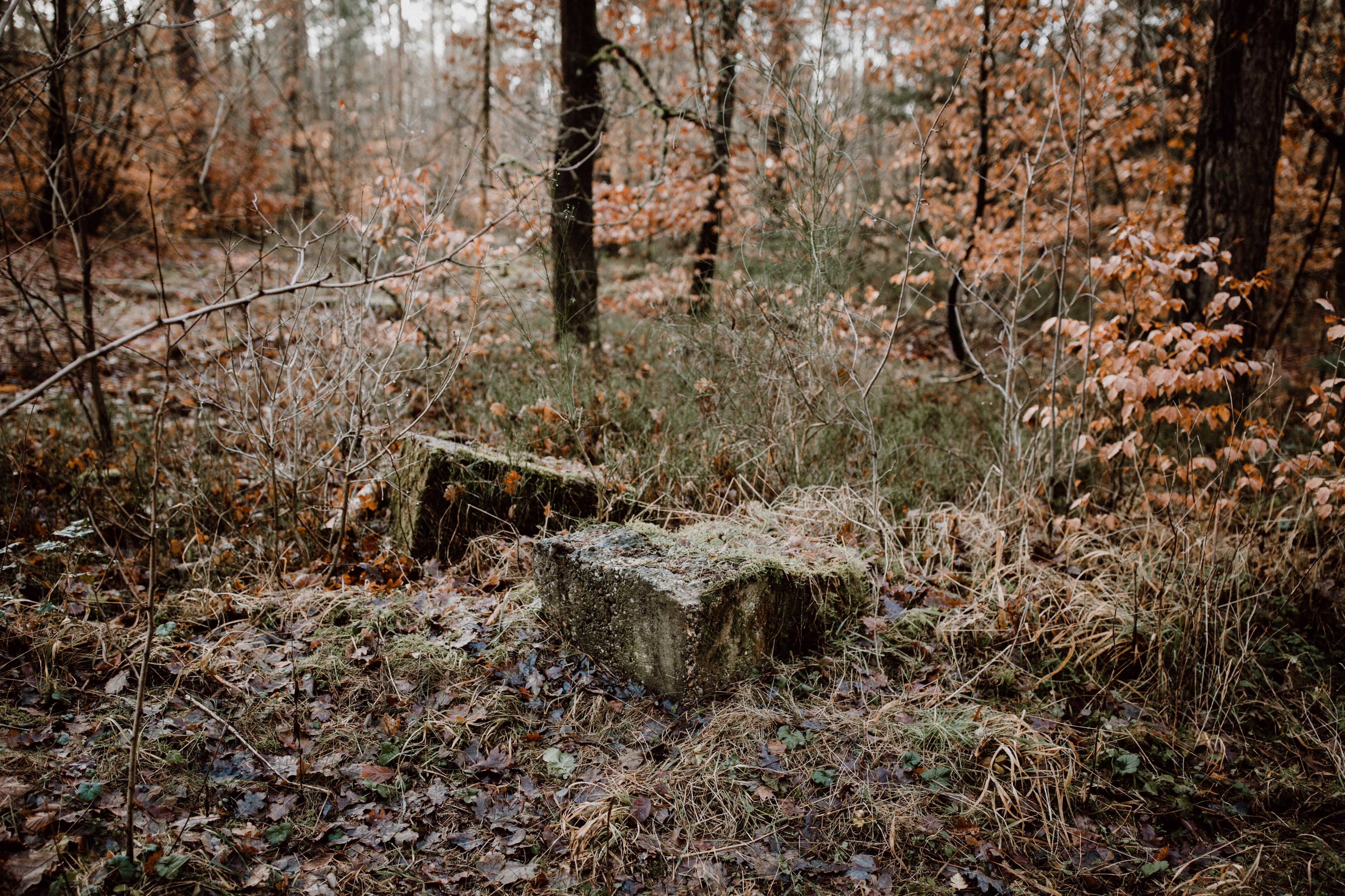 URBANERIE_Daniela_Goth_Paarfotografin_Nürnberg_Fürth_Erlangen_Schwabach_171228_0001