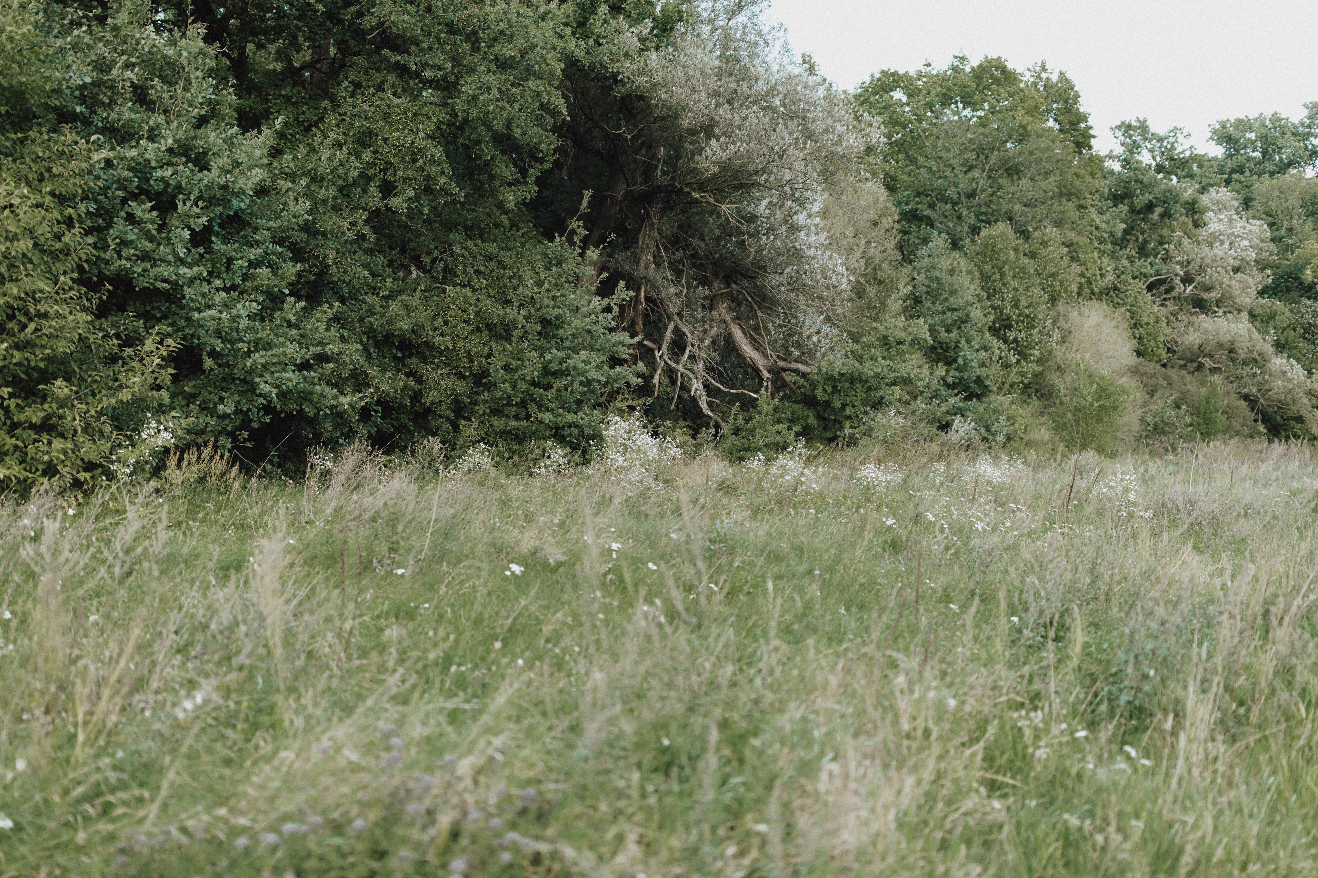 URBANERIE_Daniela_Goth_Fotografin_Nürnberg_Fürth_Erlangen_Schwabach_170906_001_0082