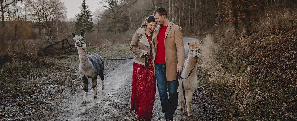 Hochzeitsfotograf_Paarfotograf_Nuernberg_Fuerth_Erlangen_Schwabach_URBANERIE_Daniela_Goth_Cadolzburg_Alpakas_190102
