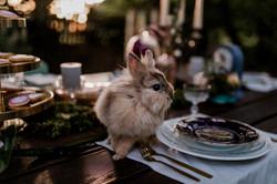 Hochzeitsfotograf_Alexander_Stumpf_URBAN