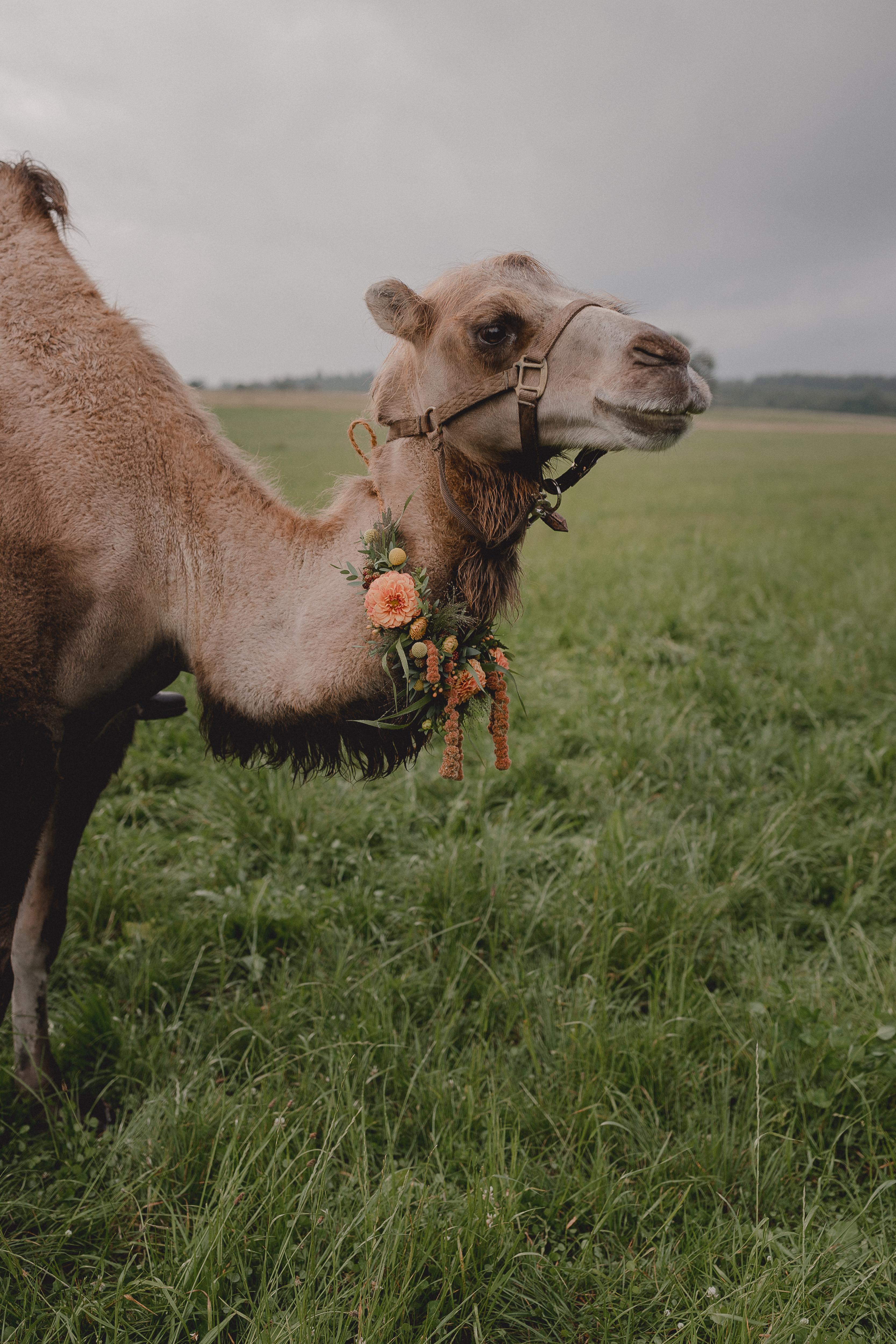 URBANERIE_Daniela_Goth_Vintage_Hochzeitsfotografin_Nuernberg_Fuerth_Erlangen_180721_0201