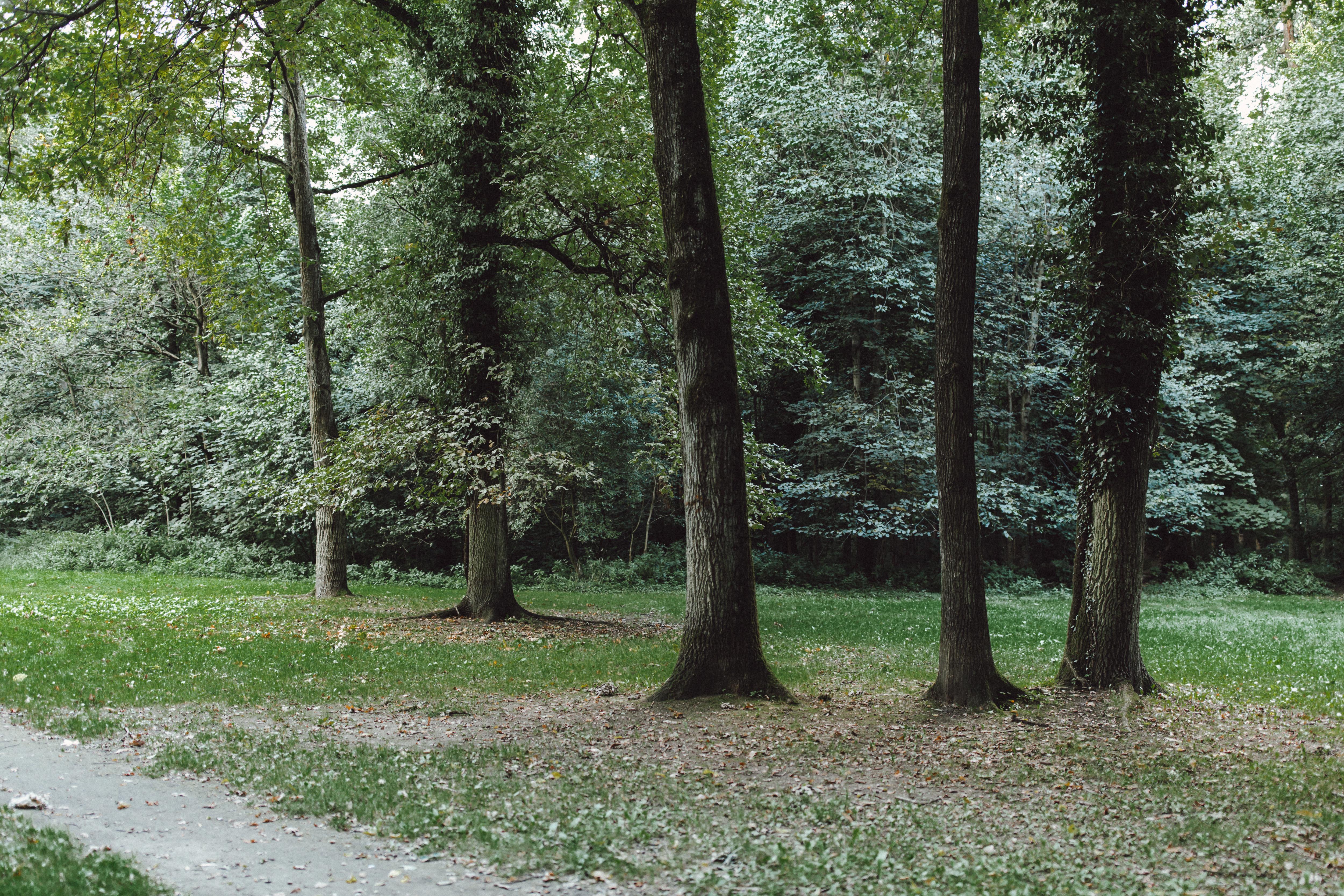 URBANERIE_Daniela_Goth_Fotografin_Nürnberg_Fürth_Erlangen_Schwabach_170906_001_0022