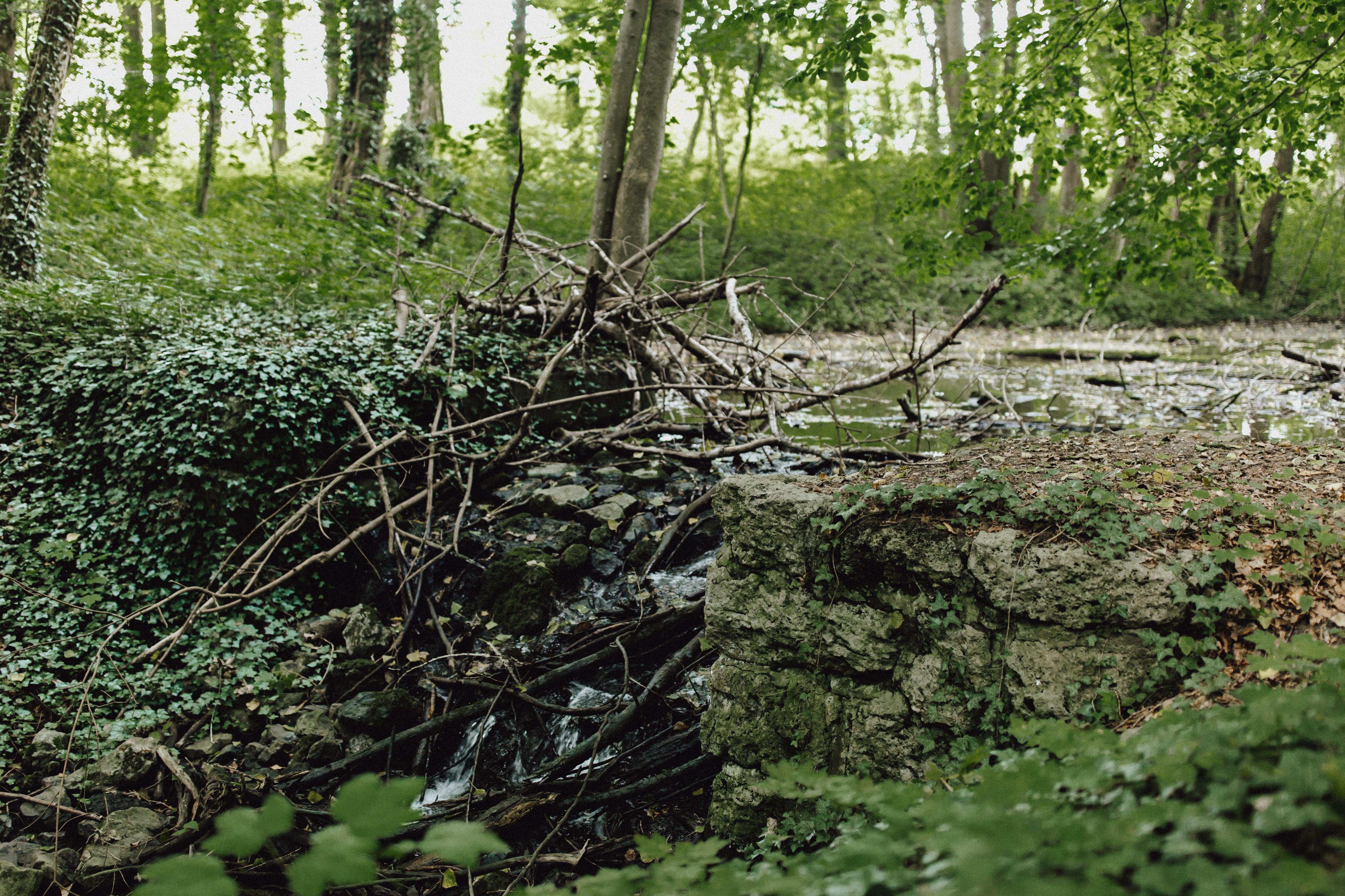 URBANERIE_Daniela_Goth_Fotografin_Nürnberg_Fürth_Erlangen_Schwabach_170906_001_0012