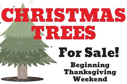 tree sale.png