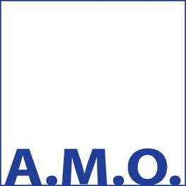 AMO co-construction: Toutes les équipes qui coordonnent les projets RU à plaine commune bénéficient d'une AMO. Un prestataire les aide à la mise en place de la co-construction du projet. Ce financement est parfois associé à la communication du projet.