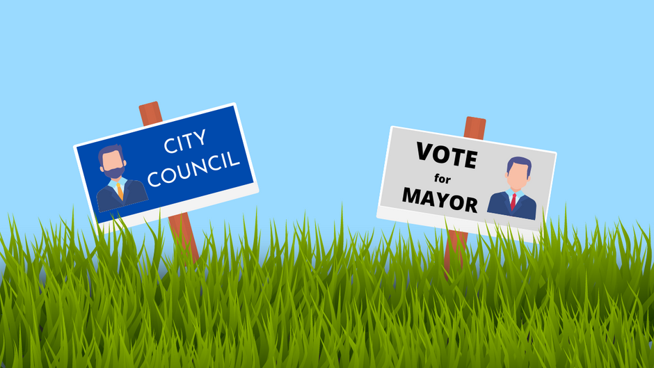 The Importance of Local Elections