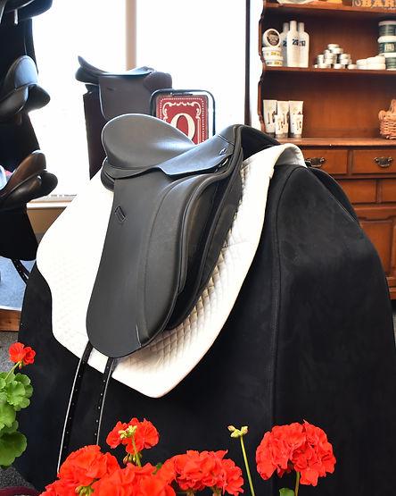 Highland Cob Dressage