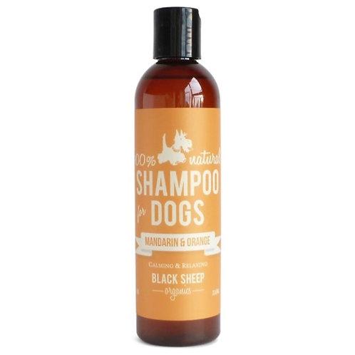 Black Sheep Organics Mandarin & Orange Organic Shampoo 8 oz