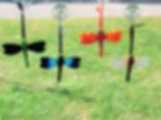 Fused dragonflies large.jpg