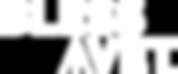 bav-logo-white.png