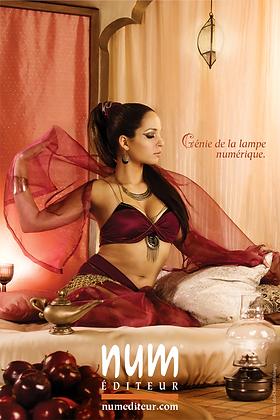 Shéhérazade (affiche)